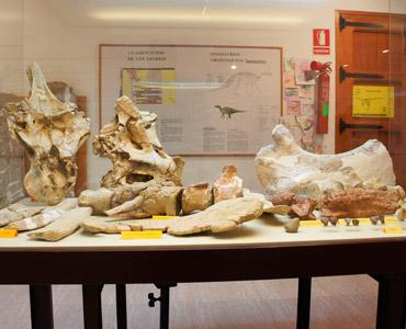 museo-paleontologico-de-galve