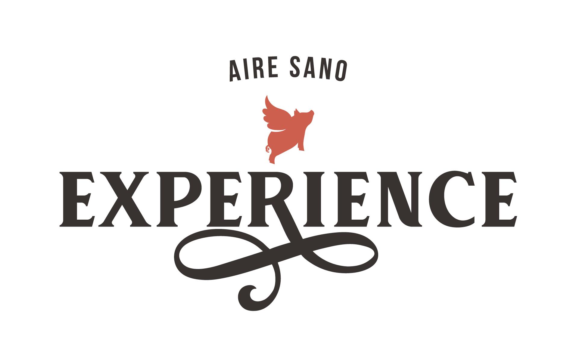 LOGO AIRESANO EXPERIENCE